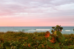 Hobe Sound Beach, Florida