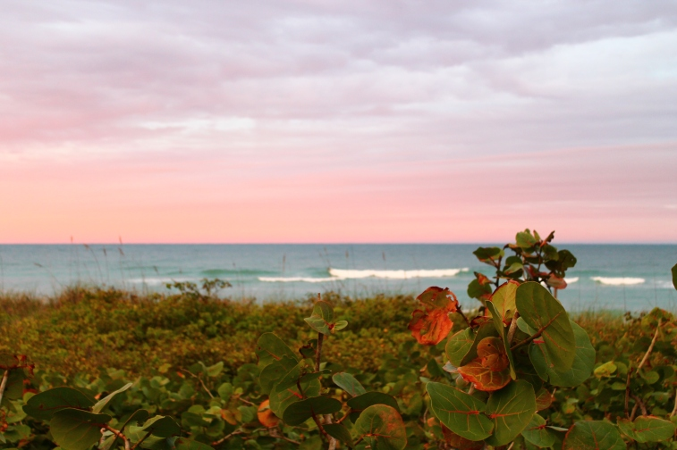 Hobe Sound Beach, Florida