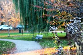Winnemac Park, Illinois
